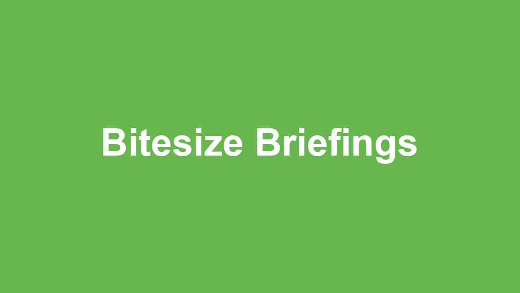 Bitesize Briefing - 1Spatial